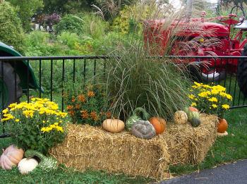 Haystacks, pumpkins, mums, and gourds all together make a nice outdoor fall display.