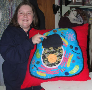 "Here is the science ""Cell"" project that Haley sewed. This is the center of the cell on the pillow she sewed."