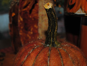 A dry needle felt pumpkin made with orange fibers, yarn, and a real pumpkin stem.