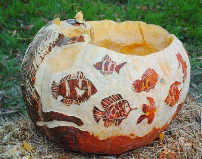 Pumpkin Carving Photos Photographs Of Pumpkin Carving